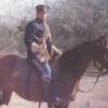 horsecavalry